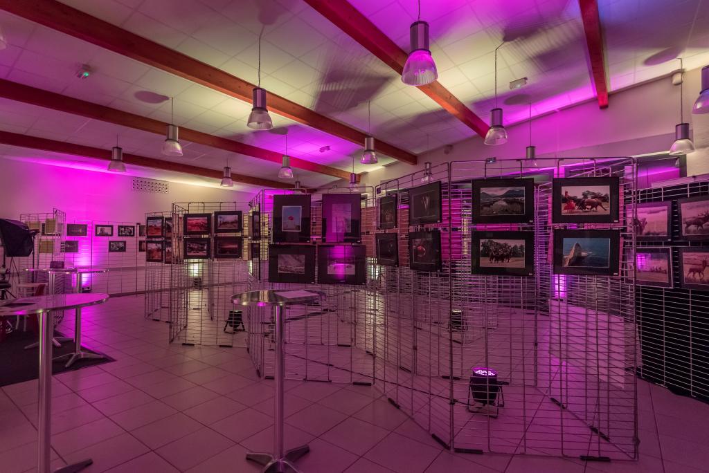 _015_Expo photo