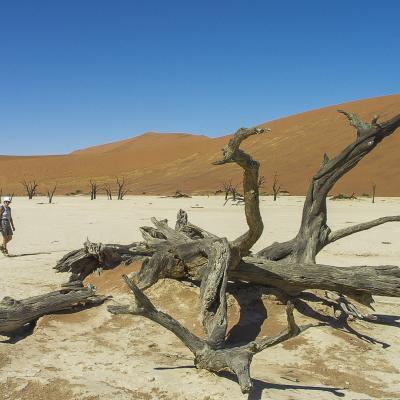 Afrique 1 050Namibie
