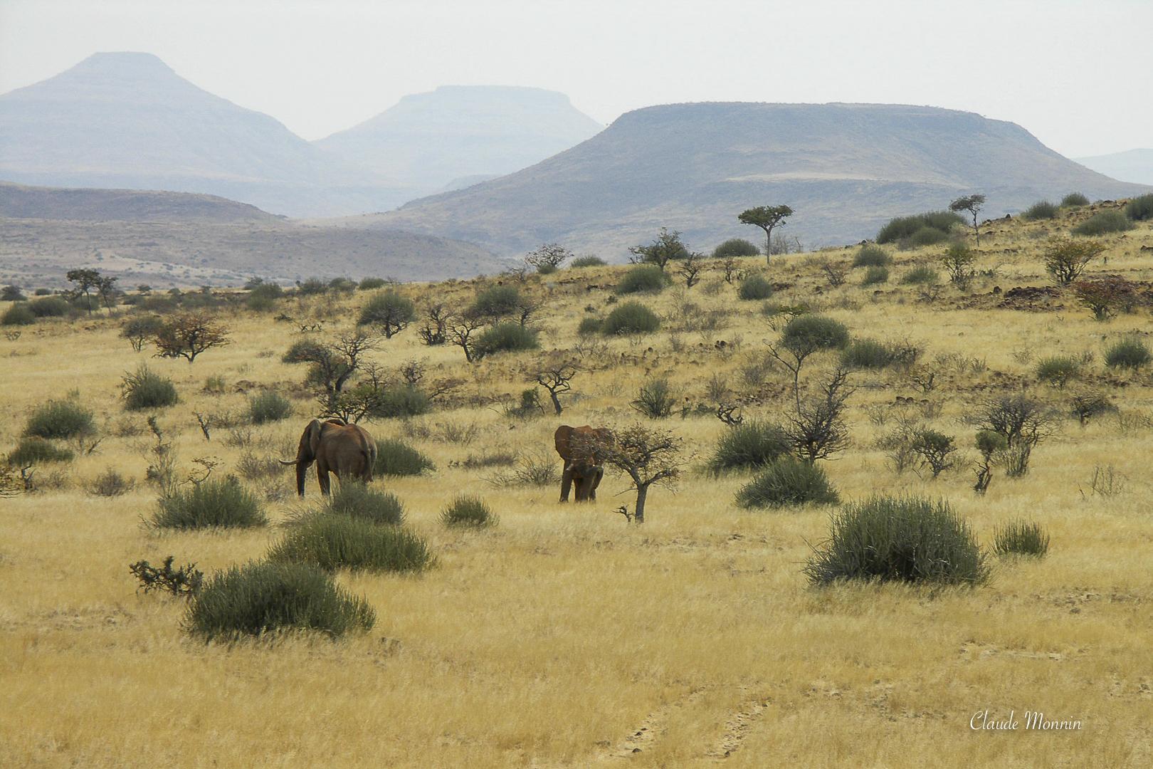 Afrique 1 193Namibie