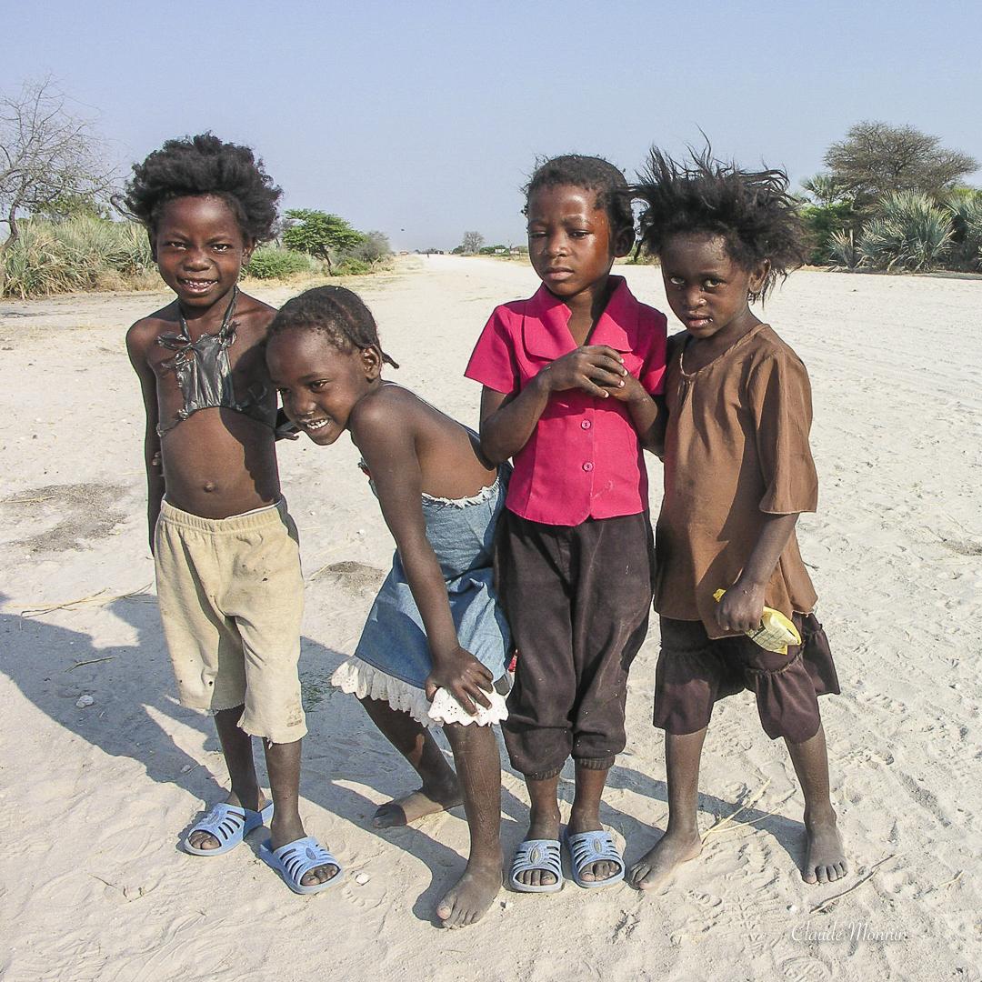 Afrique 1 409Botswana