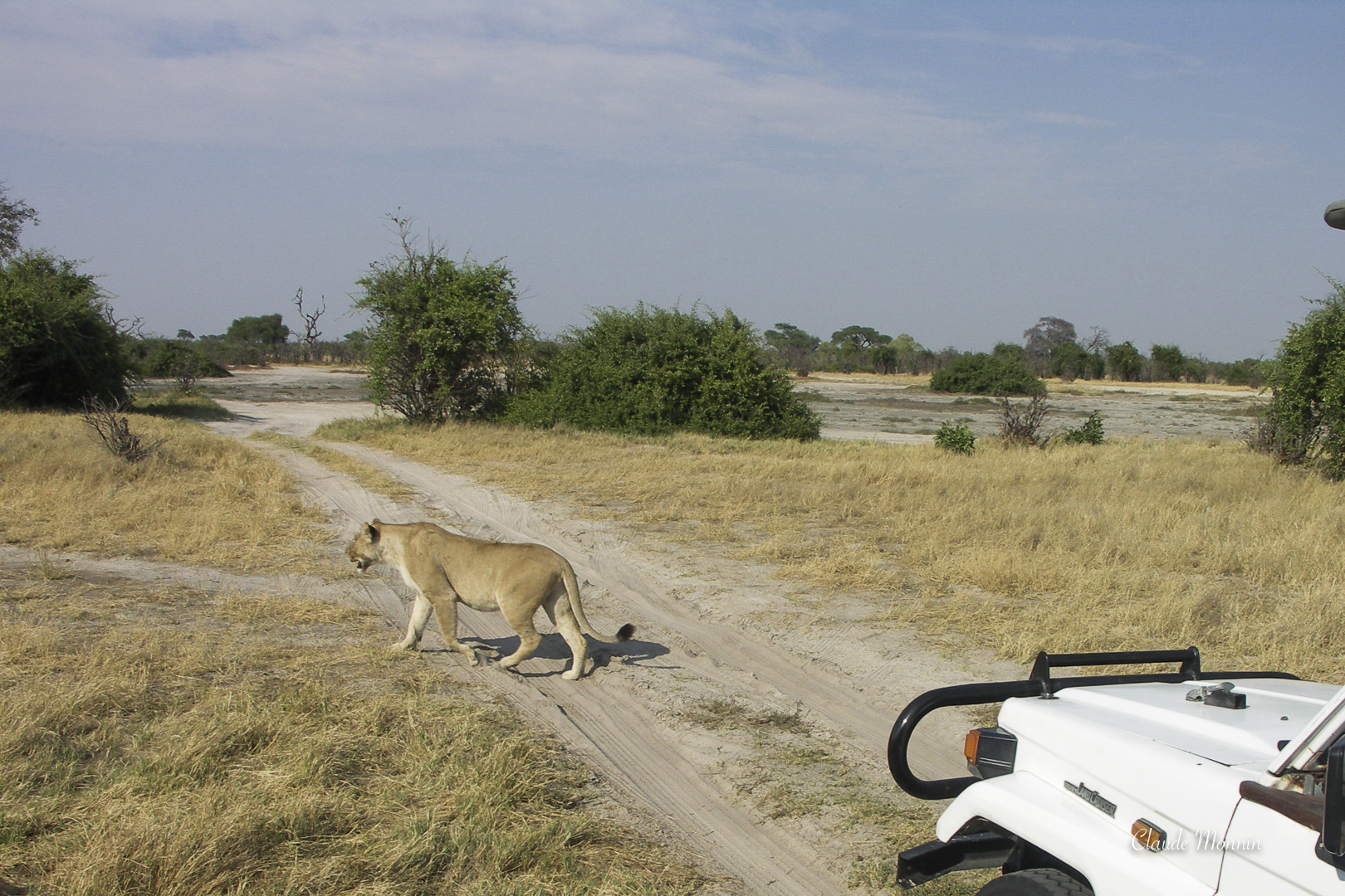 Afrique 2 111Botswana