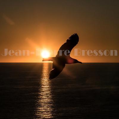 Corse, couchers de soleil