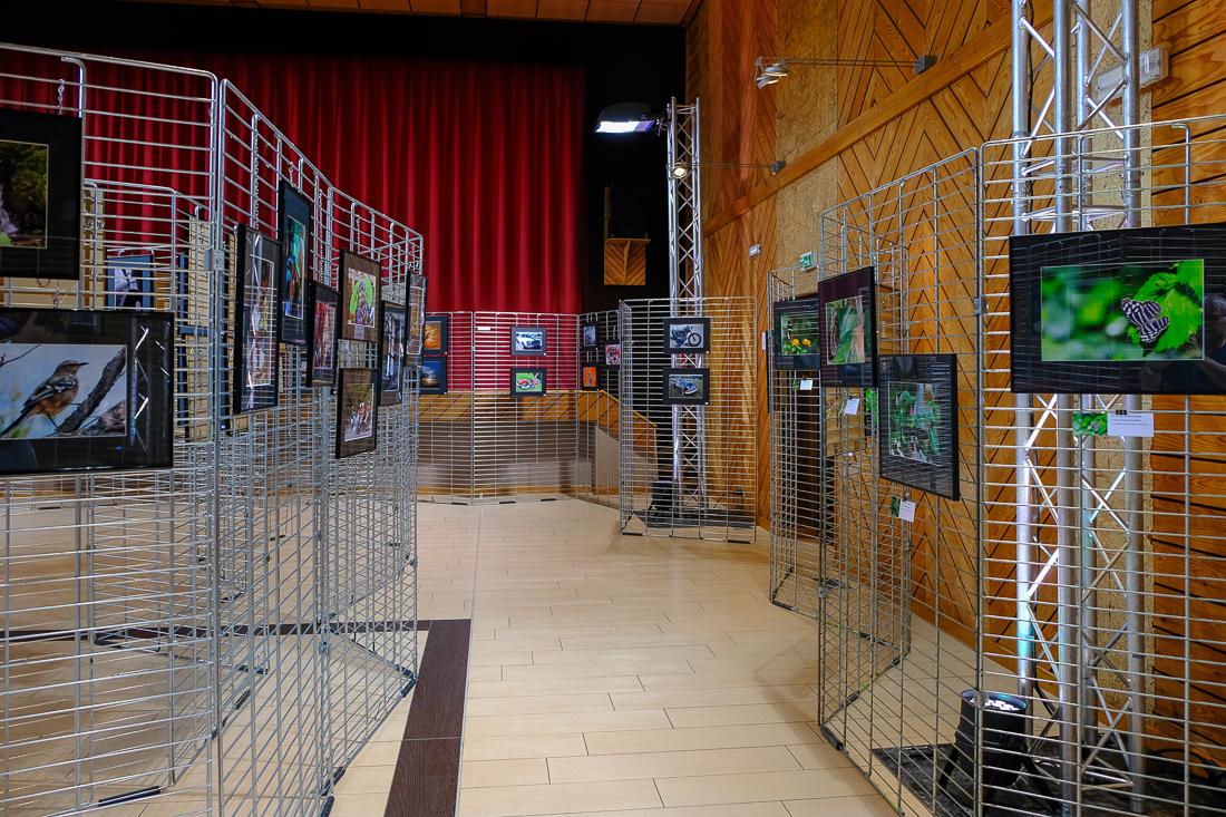 DSCF0332_expo 2017