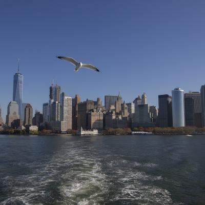 New York-4042