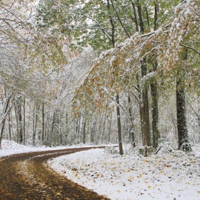 Paysage de neige_02