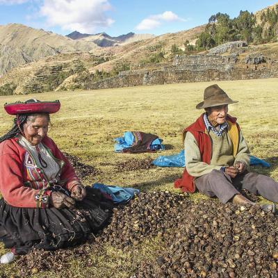 PICT27010Pérou