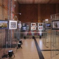 Xt3x1086 expo photos 2019